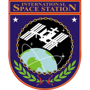 ISS Insignia Vignette